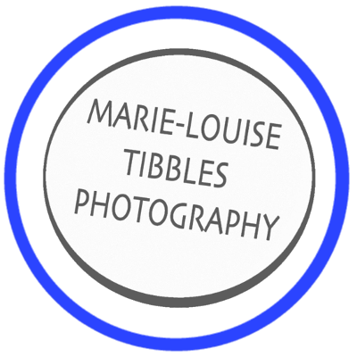 marie tibbles (website)