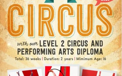 Roll Up, Roll Up for Sussex Circus Diploma
